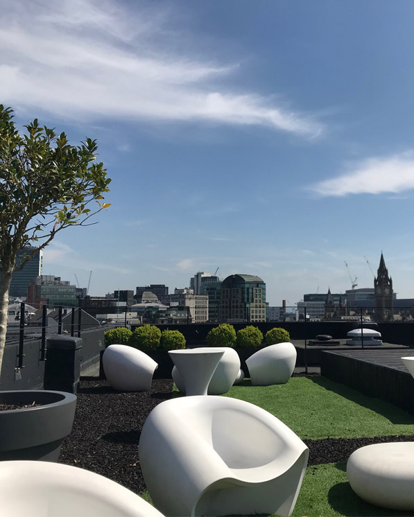 Roof top Garden at Red Cow Media